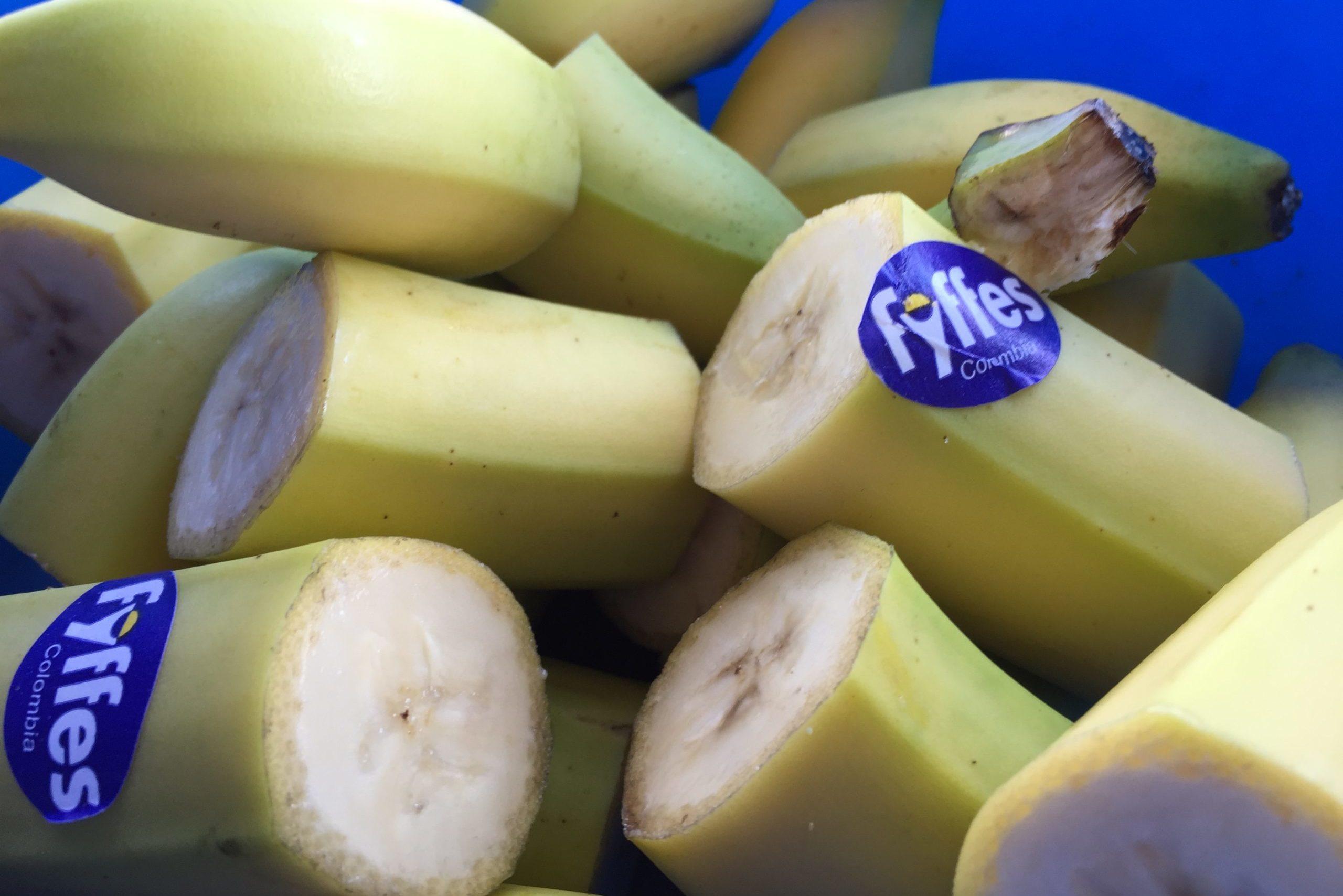 Bananen am Bodensee-Radmarathon